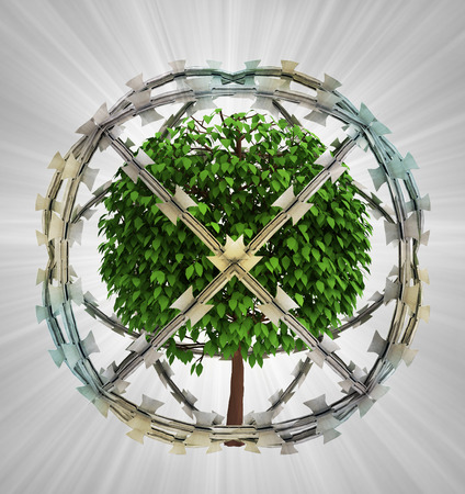 protected tree: protected tree in barbed sphere fence illustration
