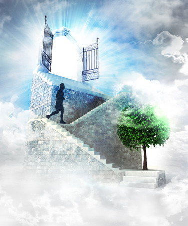 access to nature on top with gate entrance and stairway illustration illustration