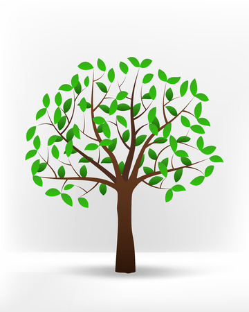 isolated green leafy summer tree vector illustration Vector