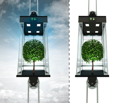 floor plant: leafy tree in sky elevator concept also isolated one illustration