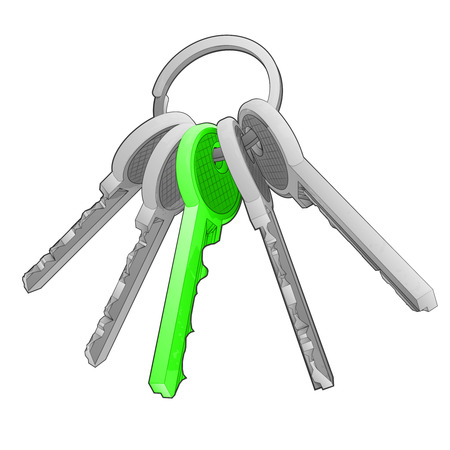 isolated key ring with green one on white vector illustration Illustration