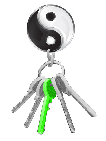 one isolated: balance icon on key ring with green one isolated vector illustration Illustration