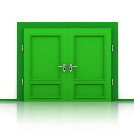 double entry: double green closed door detail 3D illustration