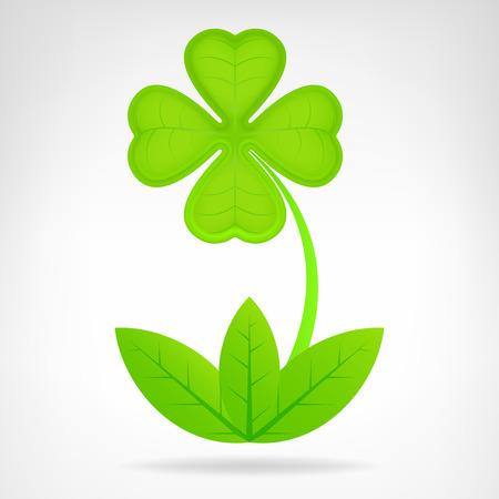 green cloverleaf plant isolated on white vector illustration Vector