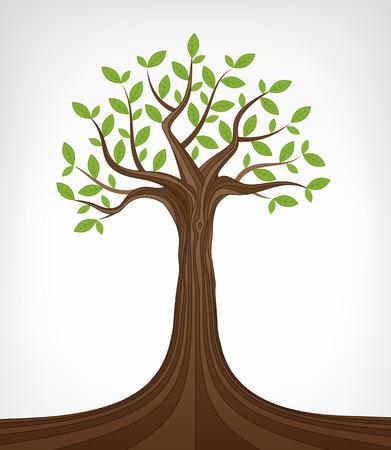 ash tree: leafy green ash tree conceptual art vector illustration