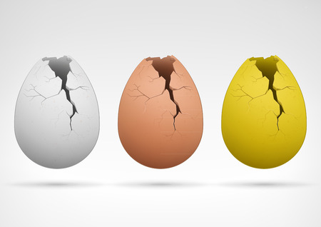 broken eggs: easter and agriculture theme vector illustration