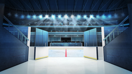 hockey goal: sport arena rendering my own design