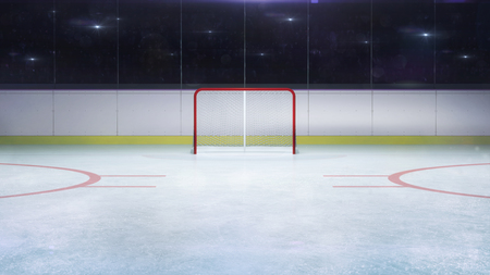ice hockey stadium goal front general view and camera flashes behind, hockey and skating stadium indoor 3D render illustration background