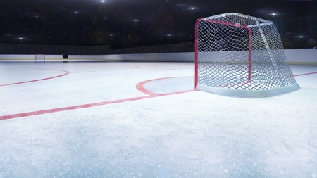 ice hockey stadium behind goal general view and camera flashes behind, hockey and skating stadium indoor 3D render illustration background