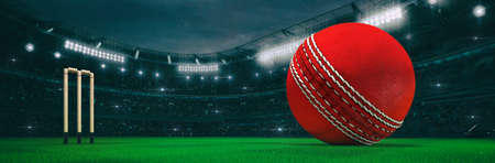 Sport stadium with cricket ball at night as wide backdrop. Digital 3D illustration for background advertisement.