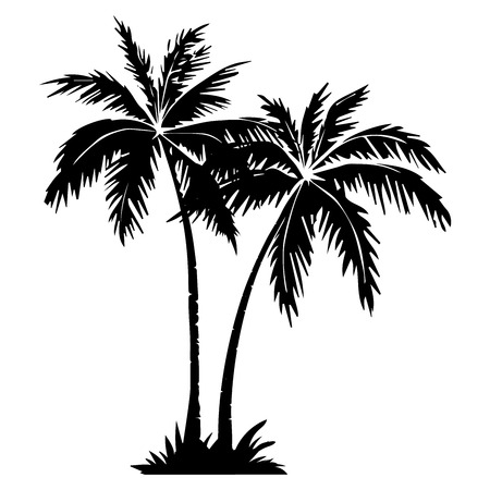 Palm tree silhouette. 2 palm trees isolated on white background. Vector illustration. for print, icon design, web, home decor, fashion, surface, graphic design Banco de Imagens - 125053569