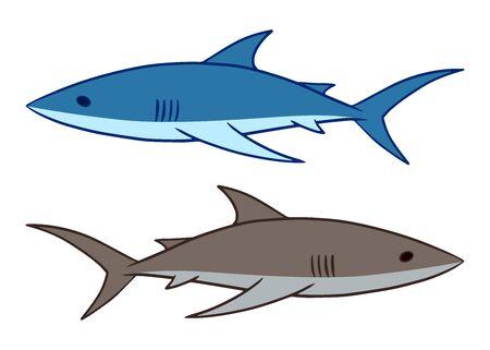 Shark vector illustration. 2 sharks swimming clip art isolated on white background.
