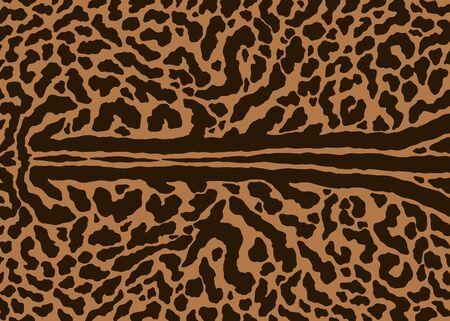 King cheetah skin pattern design. Cheetah spots print vector illustration background. Wildlife fur skin design illustration for print, web, home decor, fashion, surface, graphic design