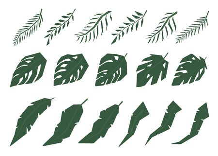 Collection of Tropical jungle leaves. Isolated on white background. View from above. Hand drawn illustration. 일러스트