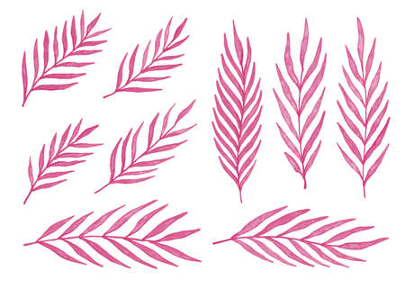 Pink watercolor leaves. Set of 9 watercolor palm leaves. Vector illustration isolated on white background.