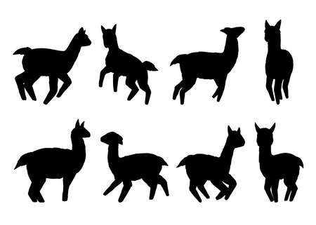 Llamas silhouette collection. Vector illustration set. Isolated on white background