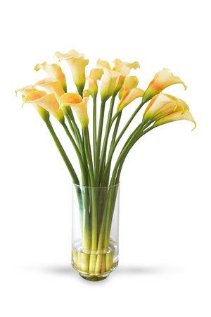 Yellow Calla Lily Flower In Vase Isolated On White Background