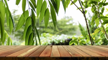 Wooden table and blurred green leaf nature in garden background. Free place for creativity. Background.