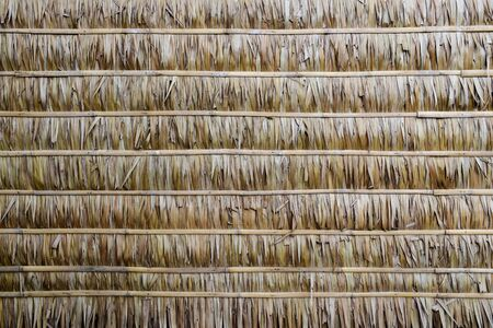 wall of Thai farmer cottage in countryside. Natural leaf texture background