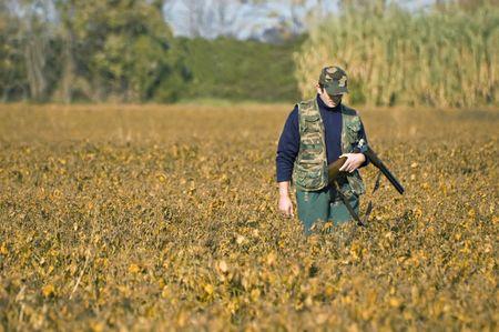 Hunter shoulders ones rifle and walks in a soya field