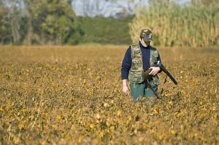 Hunter shoulders ones rifle and walks in a soya field