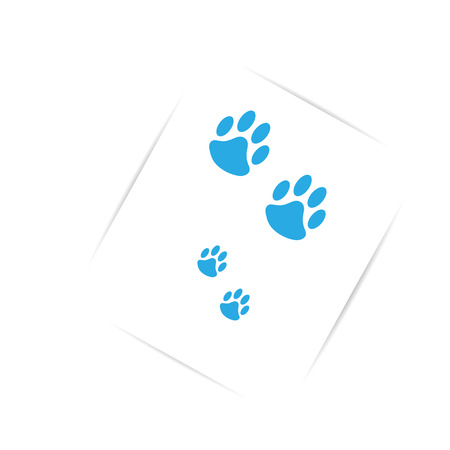 On white paper with shadow  blue bear tracks