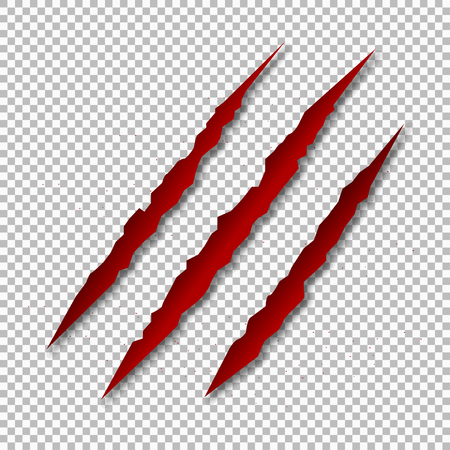 Claw scratch mark. Bear or tiger paw claw scratch bloody trace. Shredded paper. Blood isolated on white background. Horror scary blood vector Illustration