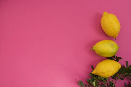Seamless pattern with fruits. Lemons on pink background. Tropical abstract background