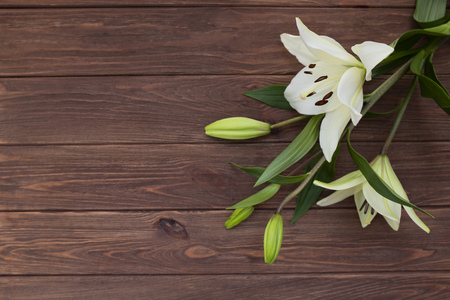 Spring flower on wooden background