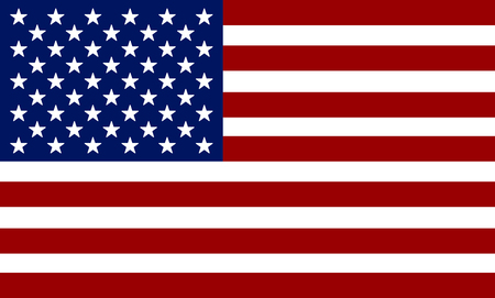 Flag of USA. American flag. Independence Day 일러스트