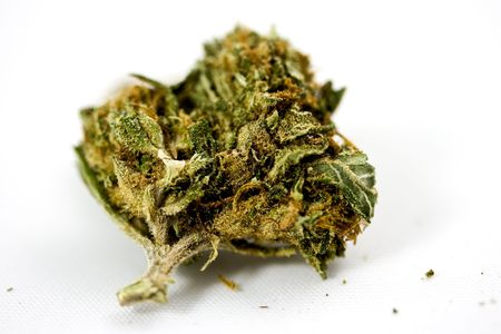 Marijuana in zoom and ganja detail