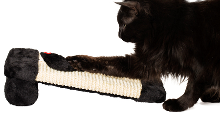Black cat playing with a toy mouse on a sisal playground Stock Photo