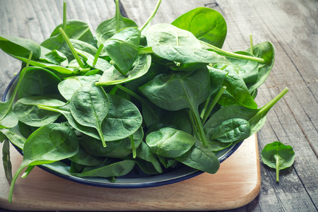 baby spinach: Baby Spinach Stock Photo