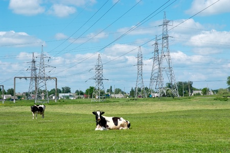 High-voltage electricity line 版權商用圖片 - 12866066