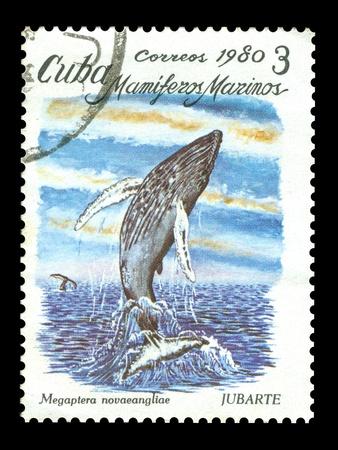 sello postal: Cuba sello de correos Foto de archivo