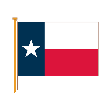 Vector excellent reproductions of the flag Texas