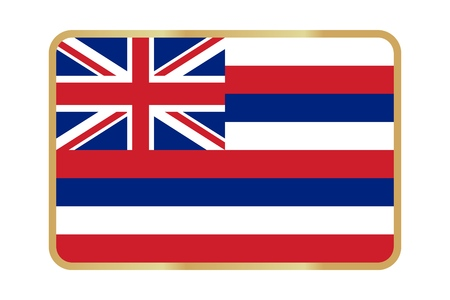 Vector Reproduction flag of Hawaii simple design icon