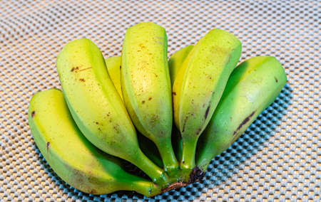 A bunch of bananas. green and not yet ripe bananas. Tropical fruit. Fiber rich food. Detox diet. Natural food. Banana fruit. bunch of green bananas.