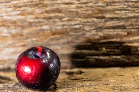 Fresh fruits of red plum. is a species of the genus Prunus with many varieties. It is the most common species of plum or sloe. Many used for preserves, jams and sweets.
