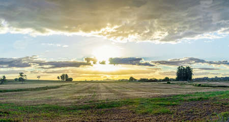 Farm landscape in the State of Rio Grande do Sul. Agricultural production fields in southern Brazil. Dusk and dramatic sky. Countryside. American pampa biome region. 免版税图像