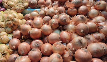 Onion tubers (Allium cepa). The term refers to its bulb, consisting of scaly, layered leaves. Product widely used as a condiment in world cuisine
