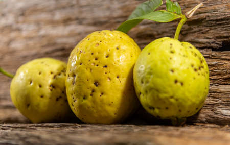 Yellowish pink guava fruits isolated on wooden background. Fresh guavas with green leaves harvested for consumption. Tropical fruits from Brazil. Wood texture. guava leaves and fruits. Reklamní fotografie
