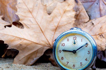 Old clock in scenery with maple leaves. Autumn representation image. Old analog clock. Maple leaves and Platanus. Scene background. Feeling of nostalgia.