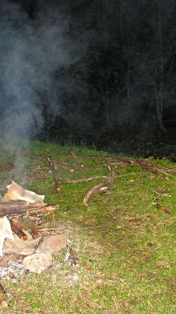 bonfire with brushwood in a green forest glade Stock Photo