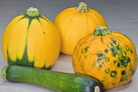 multicolored pumpkins next to zucchini in a peel on the table
