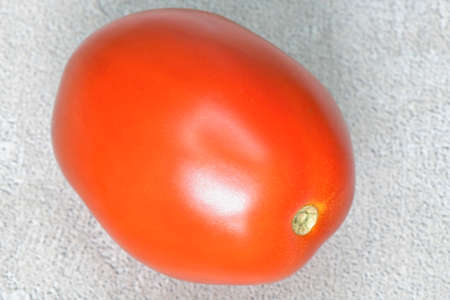 Fresh raw isolated oval tomato Standard-Bild