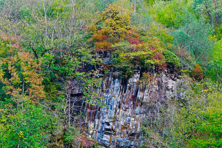 Sheer cliff among dense forest vegetation with multi-colored tree crowns at the top Standard-Bild