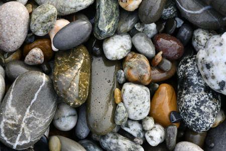 Background from natural gray and colored wet pebbles close-up in natural environment Standard-Bild