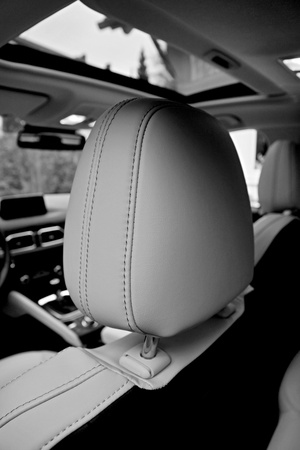 Headrests leather