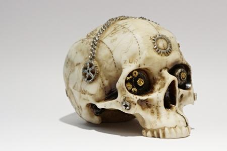 Deco skull Standard-Bild - 101957292